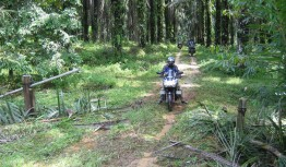 Riding off-road in Malaysia