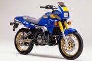 1988 Yamaha TDR250 Adventure Bike