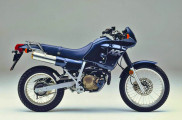 1988 Honda NX250 in Blue