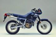 1988 Honda NX250 in Blue