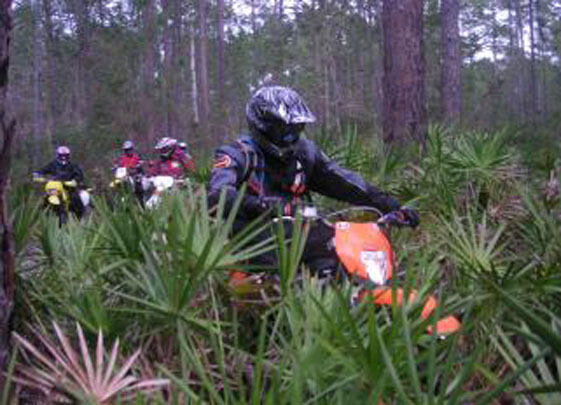 Devil's Creek Dual Sport 2015