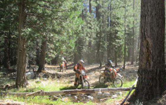 Ride Reno 200 2014