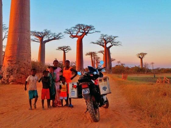 Kevin Fairburn Avenue of the Baobabs