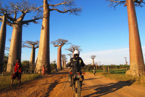 Tiffany Coats Avenue of the Baobabs Touring Madagascar