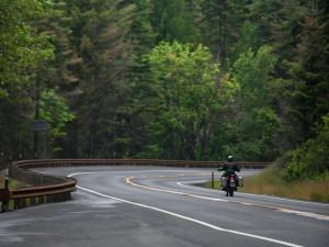 Wenatchee National Forest