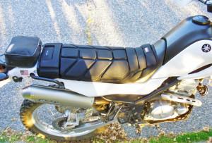 Coleman Comfort Ride inexpensive Seat pad