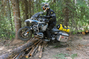 Logs jump on the IDBDR Idaho Backcountry Discovery Route