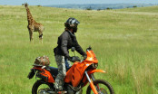 African Motorcycle Safari