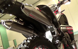 crf250 Rally dual exhaust