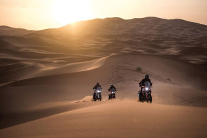 CRF1000L Africa Twin dunes