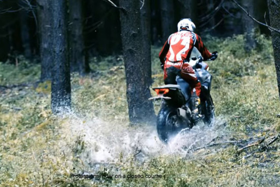 Ducati Multistrada 1200 Enduro riding through the forest