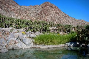 Baja Locations - Guadalupe Canyon Hot Springs