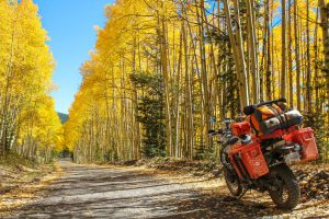 Fall Colors on the Continental Divide Trail