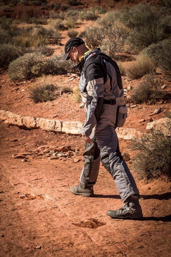 Southwest Utah Dinosaur Tracks