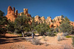 Southwest Utah Red Canyon