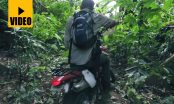 Darien-Gap-Expedition-f