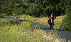 Honda CRF250L Rally Wheelie
