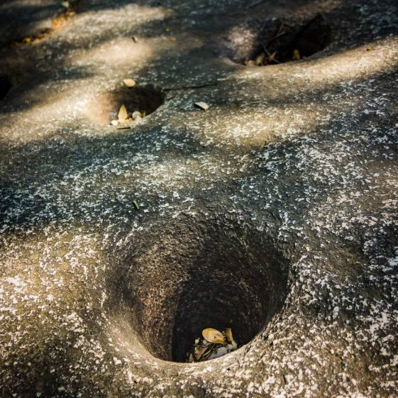 Sequoia National Park Morteros at Hospital Rock