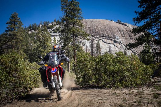 Ride motorcycles in sequoia national park