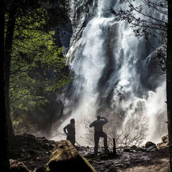 Grizzly Falls in the Sequoia National Park