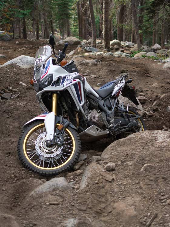 Ride the Sierra Adventure