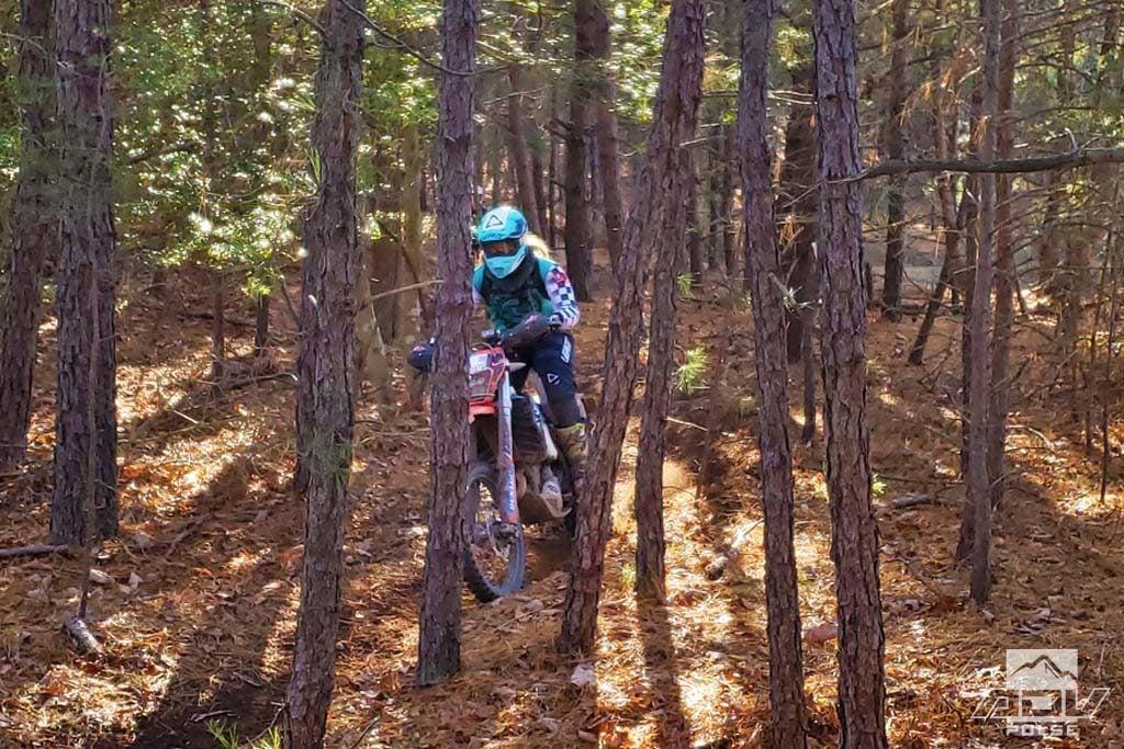 Wood riding at the Hammer Run