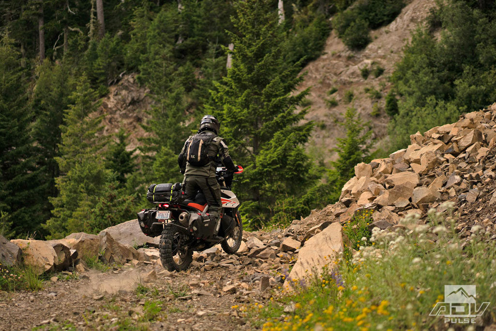 Exploring trails in the Olympic Peninsula.