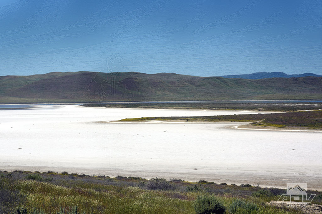 A dry portion of Soda Lake.
