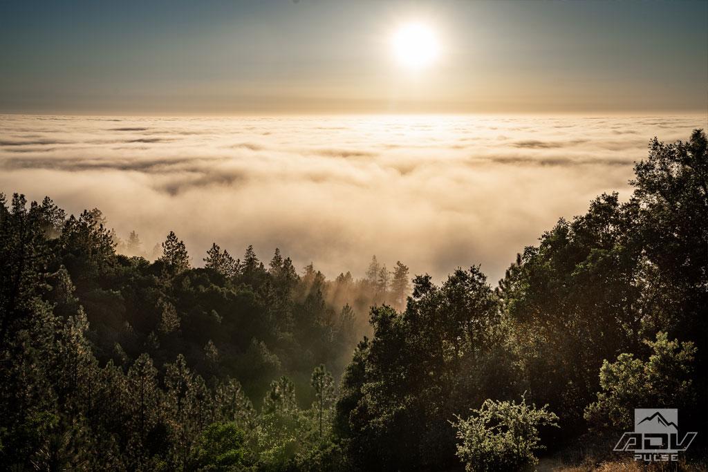 California Central Coast - San Martin Top
