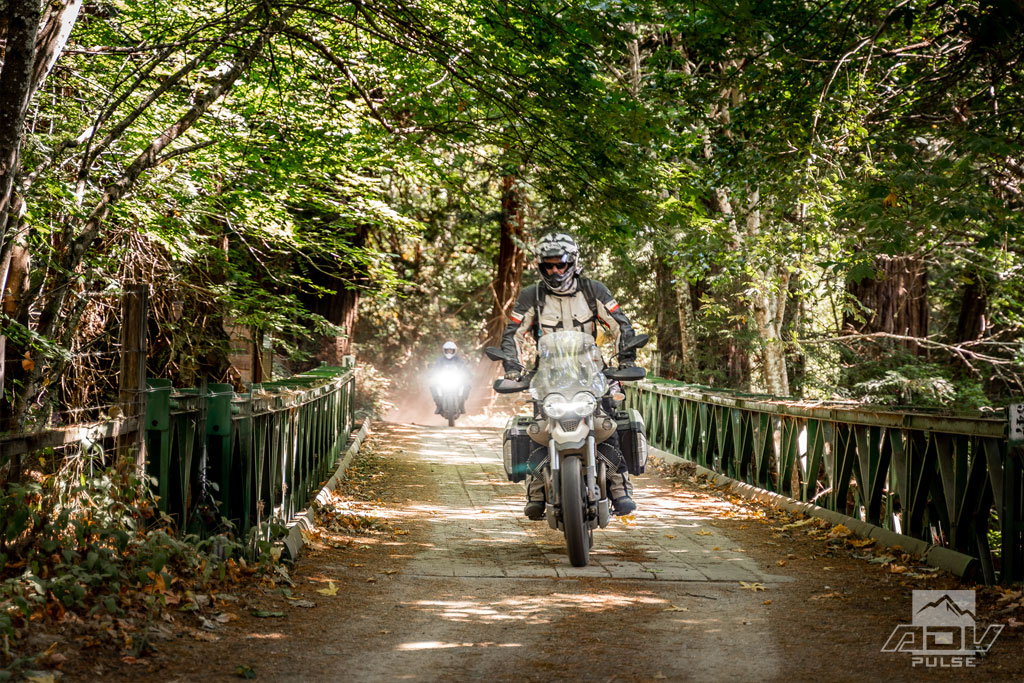 California Central Coast - Riding in the Redwood Trees