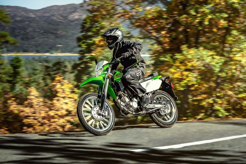 Kawasaki KLX300 dual sport
